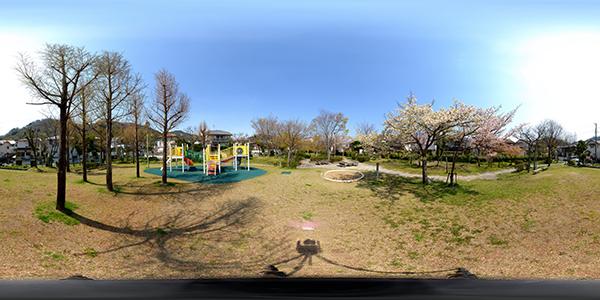 Panorama-w600