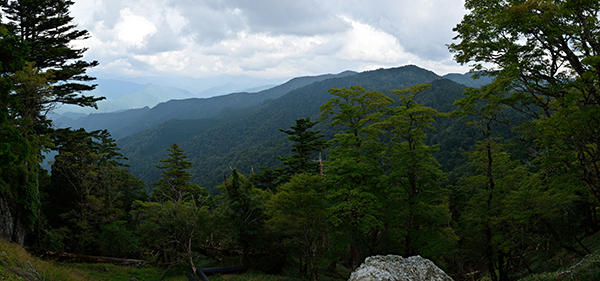 Panorama111-600