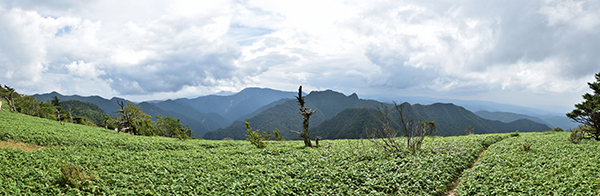 Panorama222-600